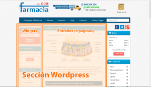 checkout wordpress